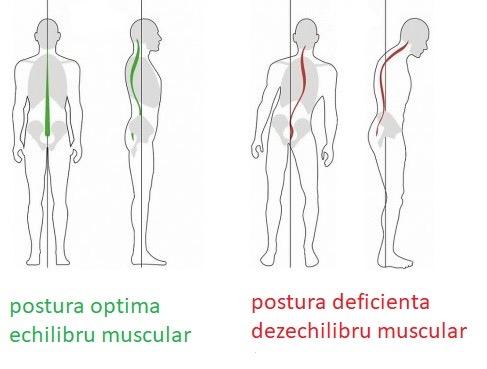 Cum să dezvolți articulațiile genunchiului - sateleunitealeromaniei.ro